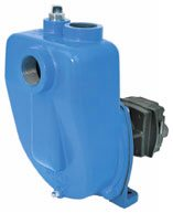 [Hypro 9303C-HM1C Centrifugal Pump Picture # 1]