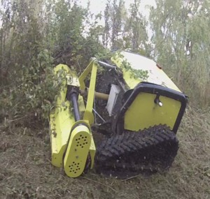 [Lynex Radio Controlled Slope Mower-TX1100 Picture # 1]