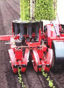 [Mechanical twin row transplanter 5000WT Picture # 1]